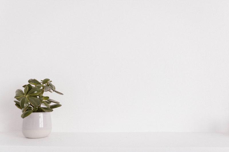 Cómo decorar una cocina blanca